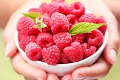 what is raspberry ketone