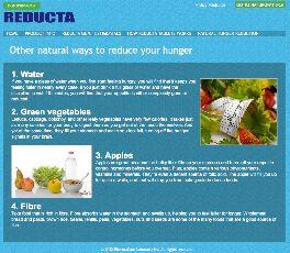 Reducat Website