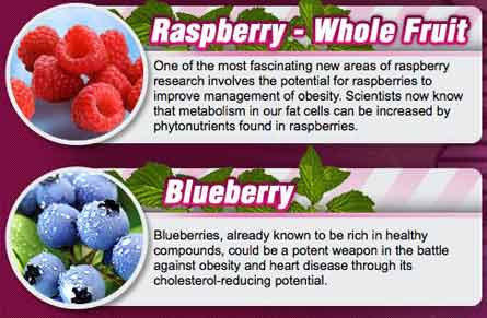 What is in Blueberry Max