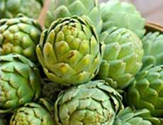 Artichoke extract as a diet pill