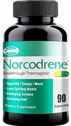 Norcodrene reviewed