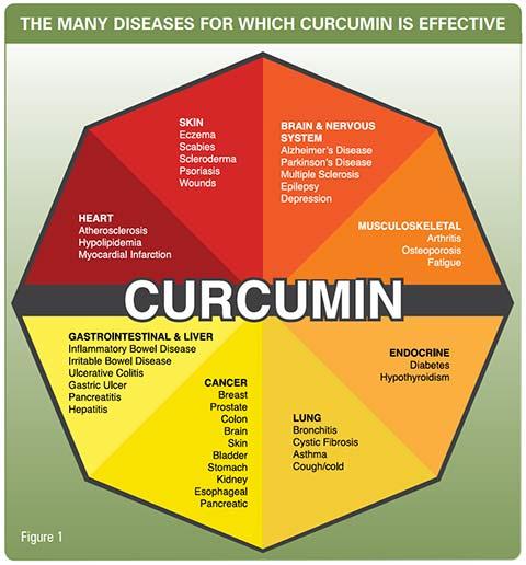 Curcumin benefits
